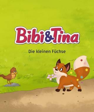 Headerbild fuer das personalisierte Buch von Bibi und Tina die kleinen Fuechse