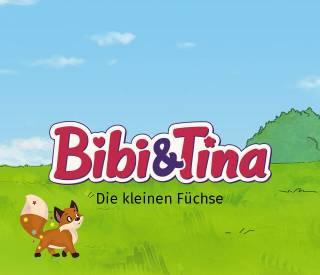Erlebe dein personalisiertes Kinderbuch mit Bibi und Tina die kleinen Fuechse